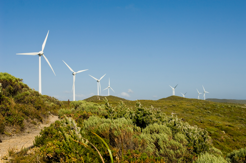 Environmental approvals for infrastructure projects like wind farms